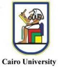 Cairo_university